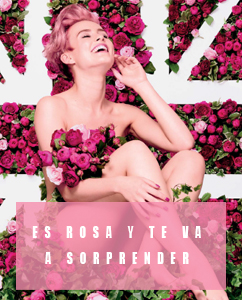40 aniversario de The body shop british rose.